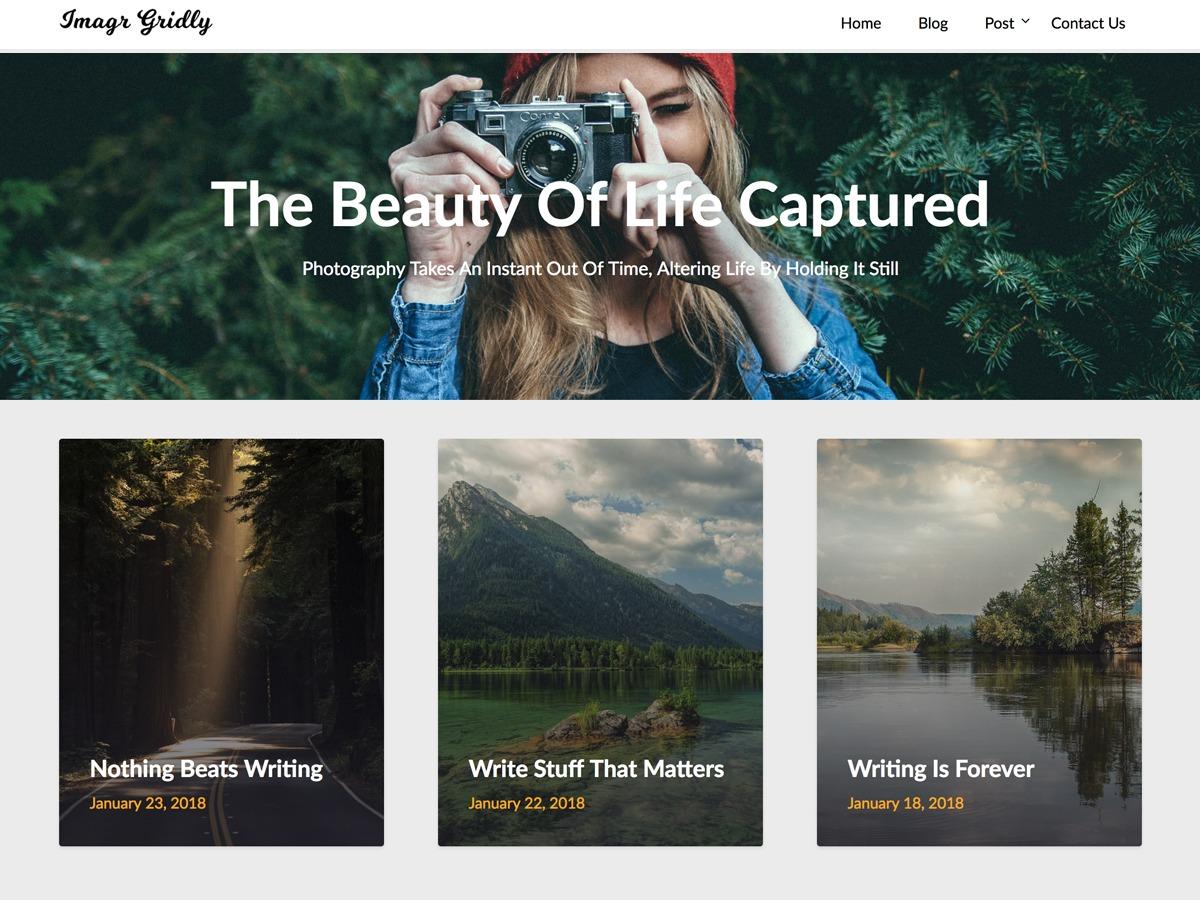 ImageGridly company WordPress theme