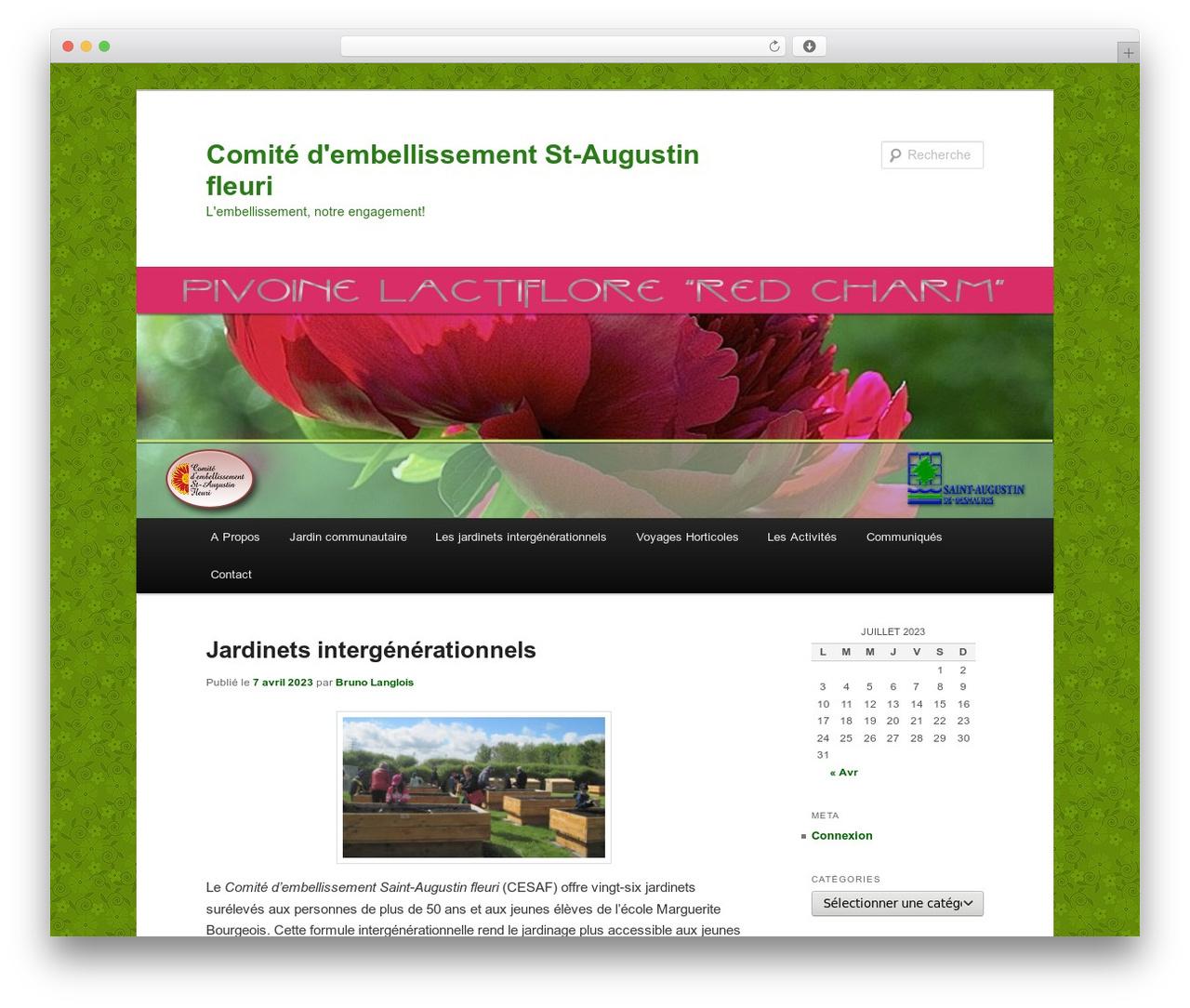 Twenty Eleven WordPress template free download - embellissementstaugustin.ca