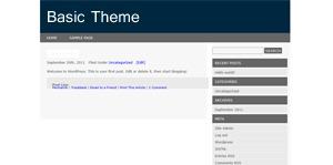 Basic WordPress website template