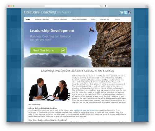 Catalyst company WordPress theme - executivecoachinglosangeles.com