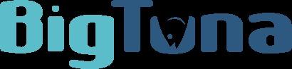 WordPress theme Hollow