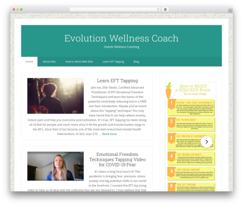 Genesis best WordPress theme - evolutionwellnesscoach.com