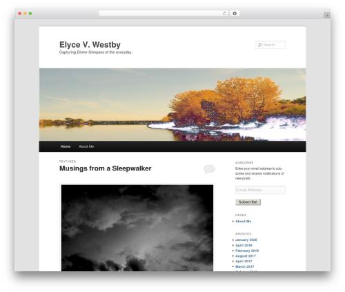 Twenty Eleven free WordPress theme - elycevwestby.com