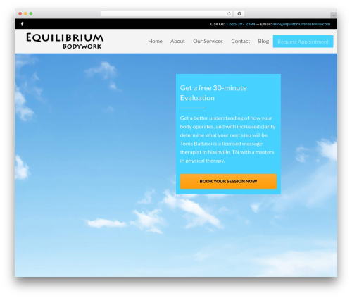 The Retailer medical WordPress theme - equilibriumnashville.com