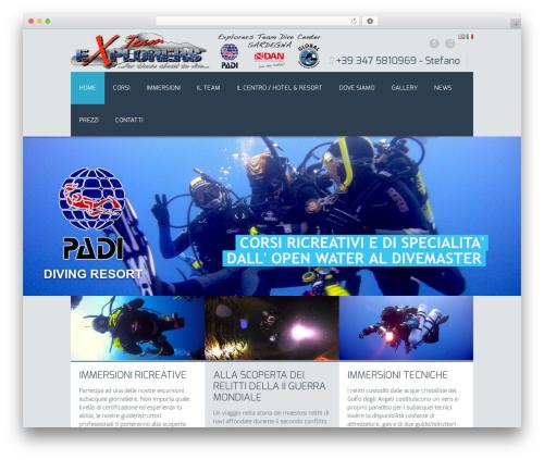 Free WordPress Polylang plugin - explorers-team.com/home