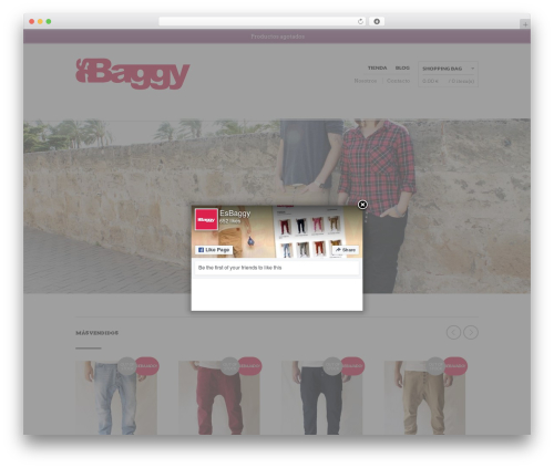 The Retailer premium WordPress theme - esbaggy.com
