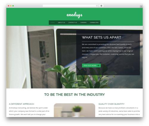 WordPress boldgrid-editor plugin - enedsys.com