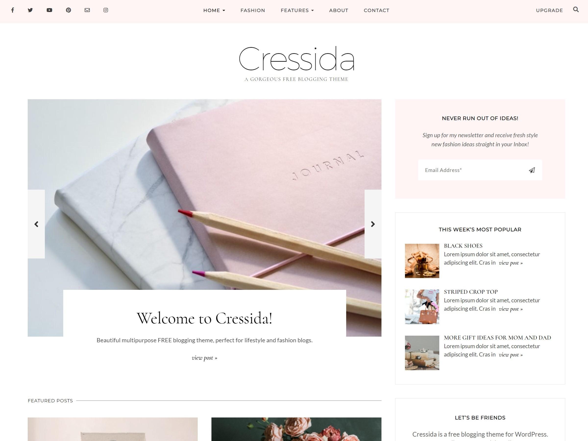 WP theme Cressida