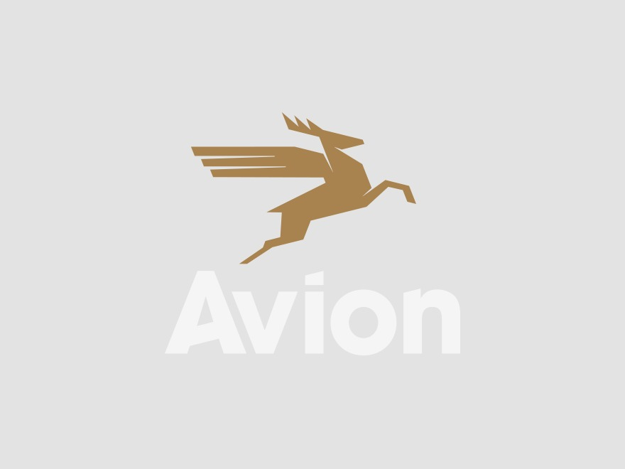 Avion WP template