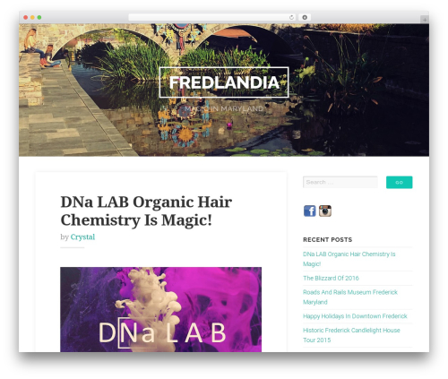Best WordPress template Swell Lite - fredlandia.com