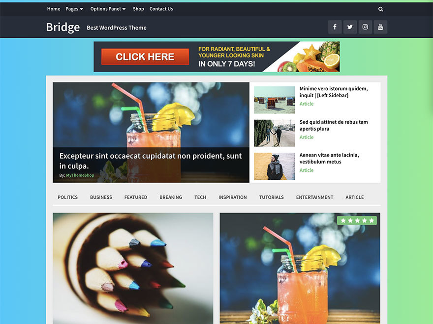 Bridge by MyThemeShop WordPress shop theme