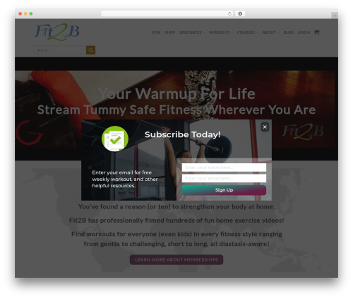 Flatsome template WordPress - fit2b.us