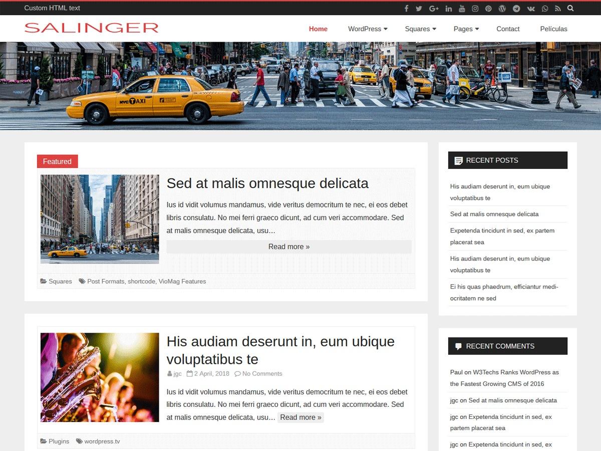 Salinger WordPress blog theme
