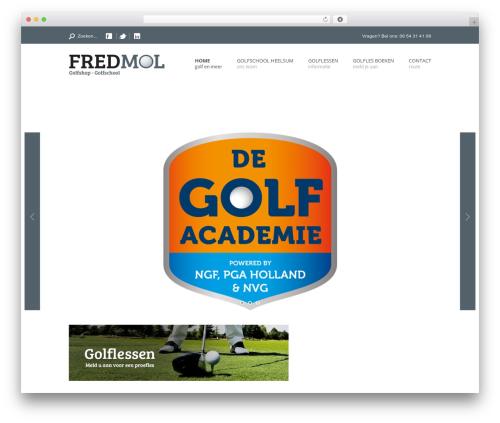 Free WordPress Google Analytics Dashboard Plugin for WordPress by MonsterInsights plugin - fredmol.nl