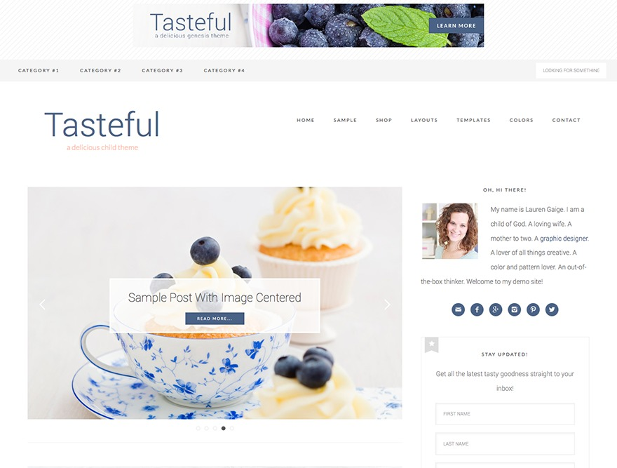 Tasteful Theme WordPress shopping theme