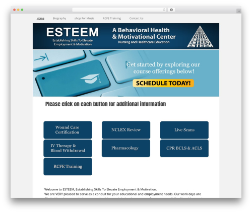 Executive Pro Theme WordPress theme - esteemdoctor.com