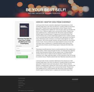 AffiloTheme Peak AJP Special Version WordPress theme design