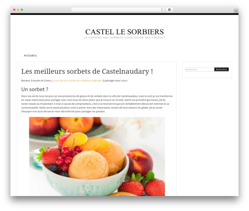 Pro Blog WordPress blog template - castellessorbiers.be