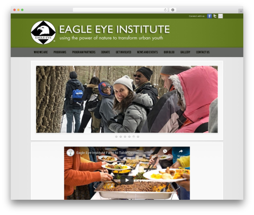 Template WordPress Modular - eagleeyei.org