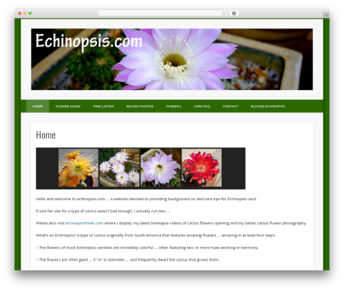 Free WordPress NextGEN-Galleryview plugin - echinopsis.com