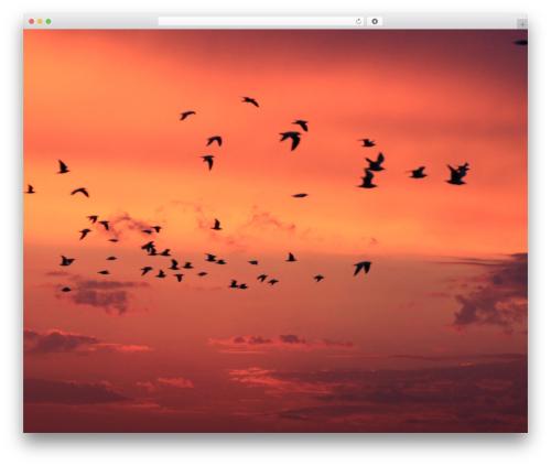 Free WordPress Image Watermark plugin - evatronic-art.com