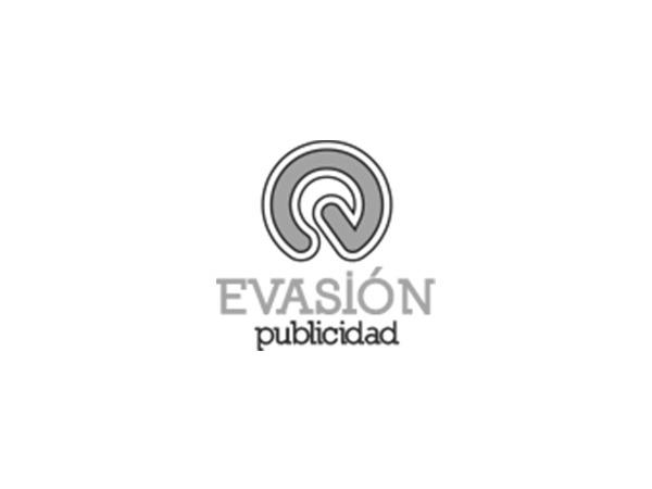 WordPress theme evasionpublicidad Child