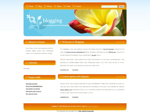 blogging WordPress blog theme