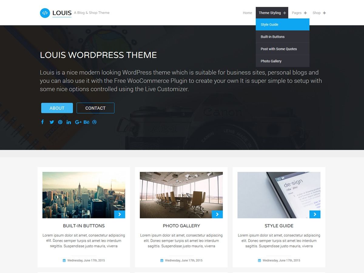 Louis best free WordPress theme