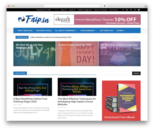 Newspaper WordPress news template - frip.in