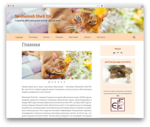 NSU WordPress theme - ua.nsu.kiev.ua