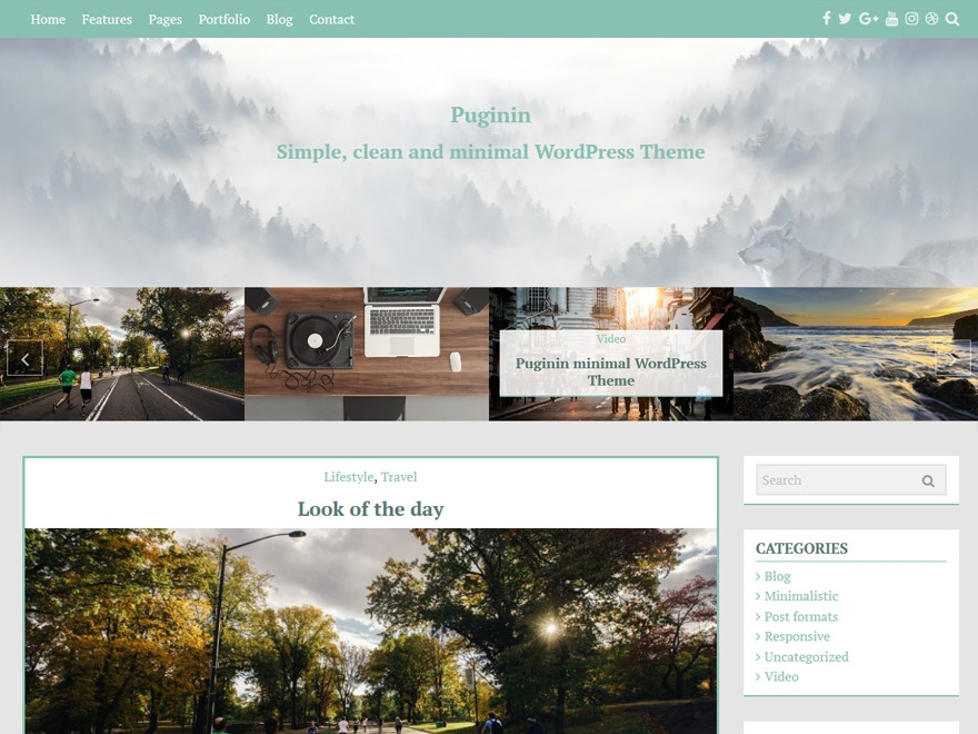 Pugini best free WordPress theme