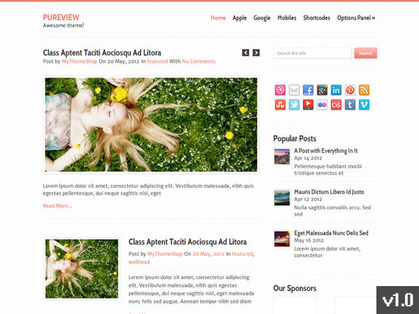 Pureview best WordPress theme
