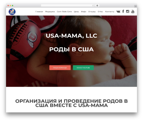 Zerif Lite WordPress theme download - usa-mama.com