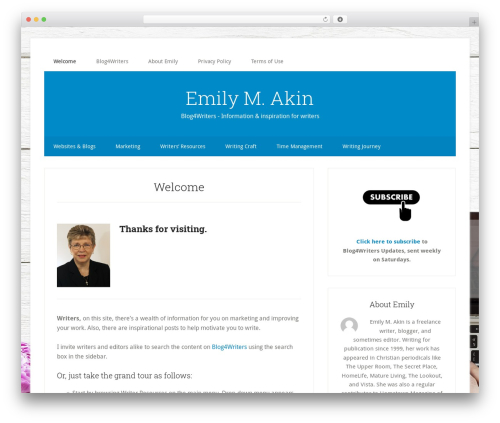 Theme WordPress Genesis - emilyakin.com