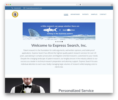 Mesmerize PRO WP theme - expresssearch.com