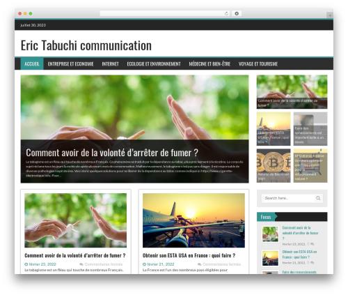 Free WordPress Sidebar Login plugin - erictabuchi.fr