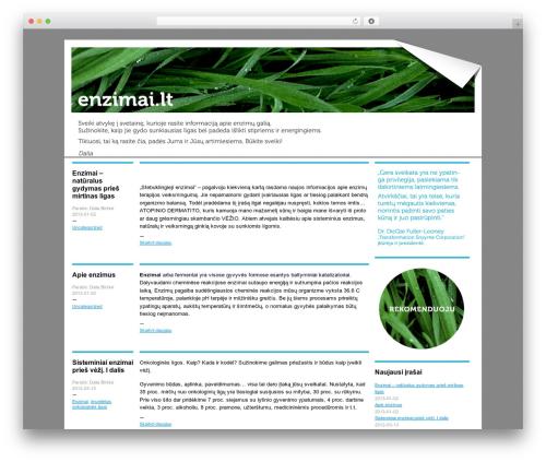-BLOGUM WordPress blog theme - enzimai.lt