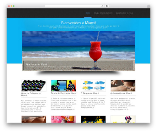 Simplicity Lite template WordPress - enmiami.co