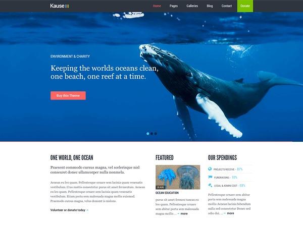 WordPress template Kause