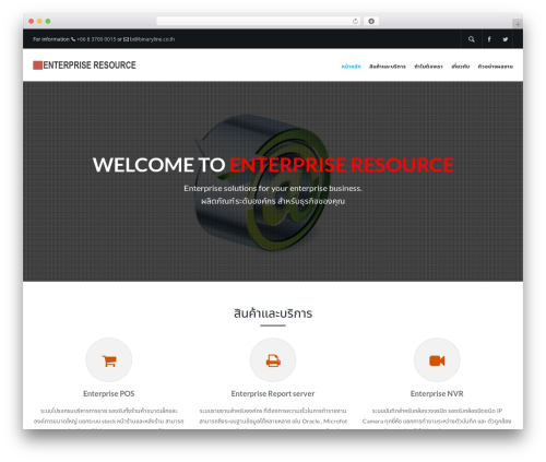 WordPress website template Elite - eprsupport.com