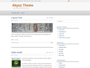 Akyuz template WordPress