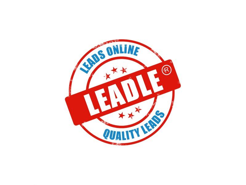Best WordPress template Leadle customers theme