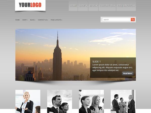 LizardBusiness company WordPress theme