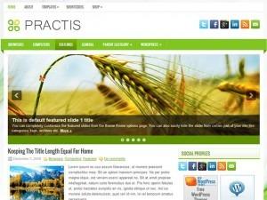 Practis WordPress blog template