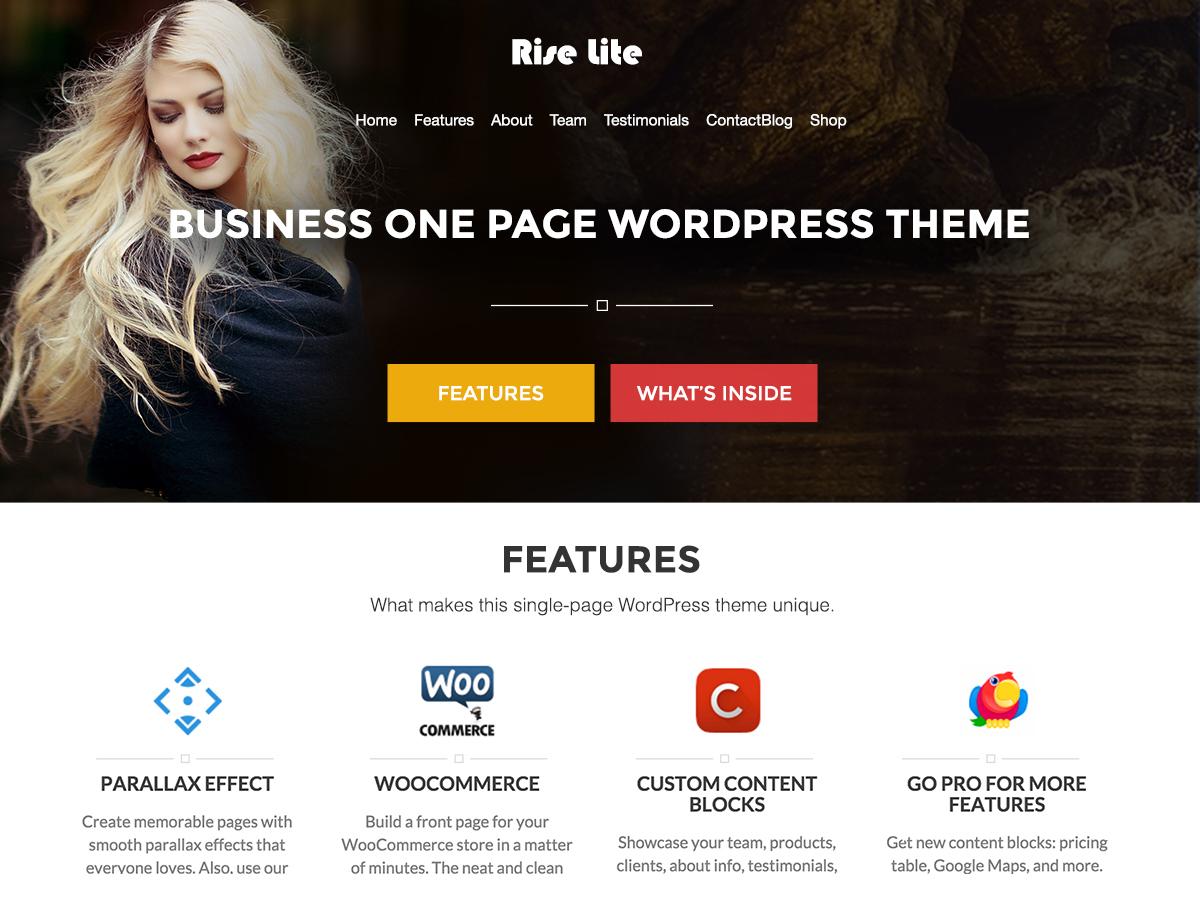 Rise Lite WordPress theme image