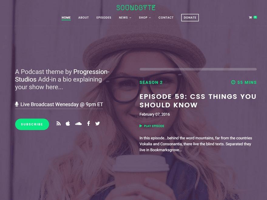 Soundbyte Progression WordPress theme design