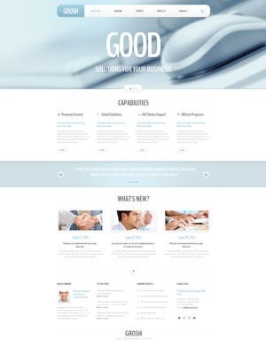 theme47830 WordPress page template
