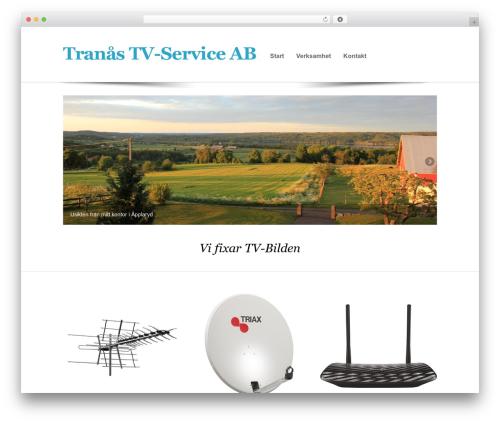 Free WordPress Page Visit Counter plugin - ttvs.se