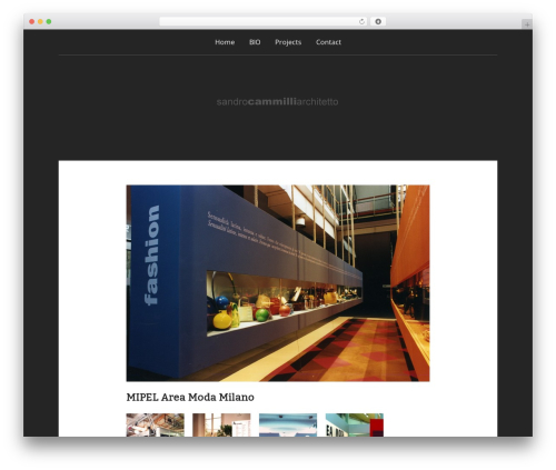 Padhang top WordPress theme - cammilli.com