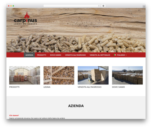 WP Simple WordPress theme - carpinus.si